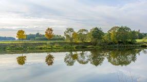 Flussuferszene mit Bäumen, die im Fluss Tauber reflektiert werden Stockfotos
