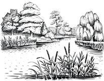 Flussvektorlandschaft mit Bäumen und Wasserpflanzen, Hand gezeichnete Illustration