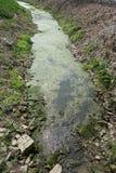 Flussverschmutzung in China lizenzfreies stockfoto