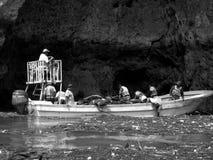Flussverunreinigung Lizenzfreie Stockfotografie