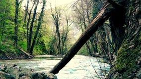Flusswasser durch Schlucht stock video