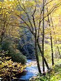 Flusswicklung durch Berge im Fall Stockfoto