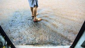 Flut auf der Straße Stockfoto