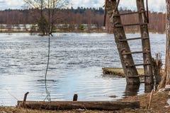 Flut - der Fluss Mologa Stockfotos