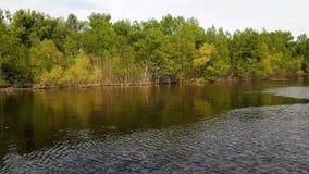 Flut des Wassers auf dem Fluss im Frühjahr stock video footage