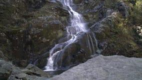 Flut-Fälle Wasserfall, Britisch-Columbia 4K UHD stock video