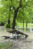 Flut im Park Lizenzfreies Stockbild