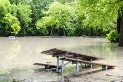 Flut im Park Stockbilder