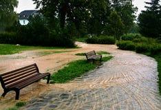 Flut im Park Stockfotografie
