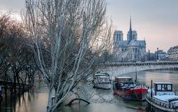 Flut in Paris Stockfotos
