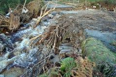 Flutartige Überschwemmungen Stockfotos