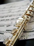 Flute. On music notes stock image