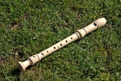 Flute2 库存图片