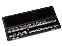 Flute in box Isolated on White Stock Image