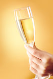 Flute of champagne Stock Photos