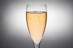 Flute of champagne with gold bubbles Stock Images