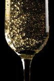 Flute of champagne with golden bubbles Stock Image