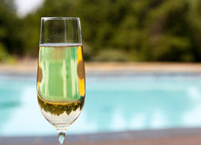 Flute of cold champagne by side of pool Royalty Free Stock Image