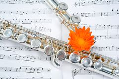 Flute between dots Royalty Free Stock Images
