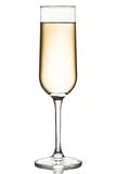 Flute glass of white wine Royalty Free Stock Image