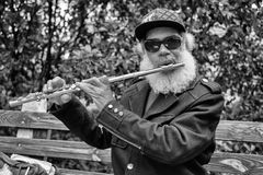 Flute player Royalty Free Stock Image