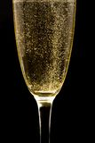 Flute with sparkling champagne Stock Images