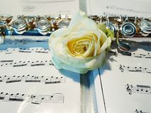 Flute with rose on background of notes royalty free stock images