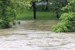 Fluten Prag 2013 - Stvanice-Insel unter Wasser Lizenzfreie Stockbilder