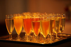 Flutes of sparkling champagne Royalty Free Stock Photos