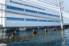 Flutfabrik in Nava Nakorn industrielles Thailand Lizenzfreie Stockfotografie