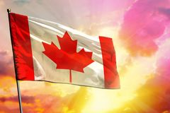 Fluttering Canada flag on beautiful colorful sunset or sunrise background. Success concept. Fluttering Canada flag on beautiful colorful sunset or sunrise royalty free stock photography