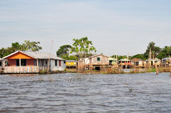 Flutuação de Amazon e casa típica do Stilt Imagem de Stock