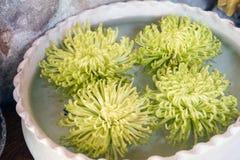 Flutuador da planta verde na decoração da bacia da água imagens de stock royalty free