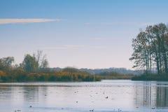 Flutuador das folhas de outono na água Lago ou rio com água quieta na estação do outono imagens de stock