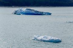 Flutuador do gelo no mar imagem de stock
