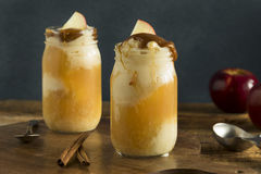Flutuador frio do gelado da sidra de maçã fotografia de stock