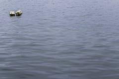 Flutuador no mar fotografia de stock royalty free