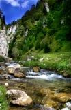Flux de fleuve Photographie stock