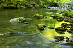Flux de fleuve dans TN, montagnes fumeuses Photo stock