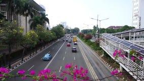 Fluxo de tráfego na estrada com a flor no primeiro plano filme
