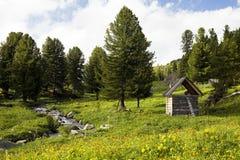 Fluxo do rio nas montanhas altas Fotos de Stock Royalty Free
