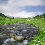 Fluxo do rio nas montanhas altas Imagens de Stock