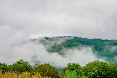 Fluxo do vento da névoa foto de stock royalty free