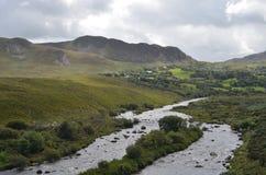 Fluxo pequeno do rio na paisagem verde da vegetação e da montanha em uma estrada nacional na Irlanda Imagem de Stock
