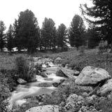 Fluxo preto e branco do rio Fotografia de Stock Royalty Free