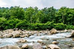Fluxo rápido do rio Imagens de Stock Royalty Free
