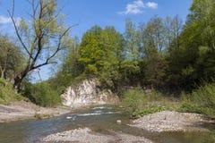 Fluxo rápido do rio da montanha Fotografia de Stock Royalty Free