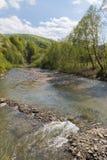 Fluxo rápido do rio da montanha Imagem de Stock