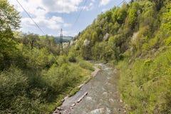 Fluxo rápido do rio da montanha Imagens de Stock