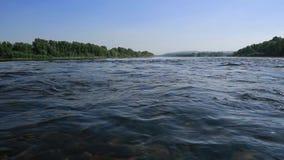 Fluxo rápido no rio raso largo, vista no pedras na parte inferior através da água Brilho de Sun na ?gua vídeos de arquivo